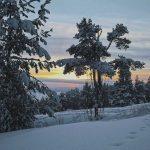 После снегопада в Петрозаводске
