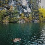 Мраморный каньон Рускеала и утка