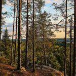 Рысья гора, Вяртсиля, Карелия