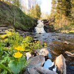 White Bridges falls, Karelia, Russia